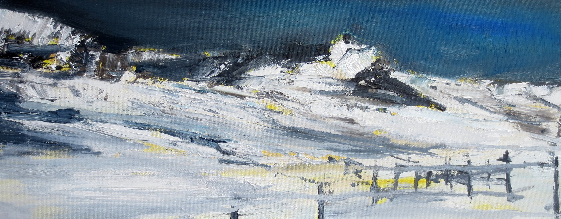 2018 Nevicata 20x50cm oil on canvas